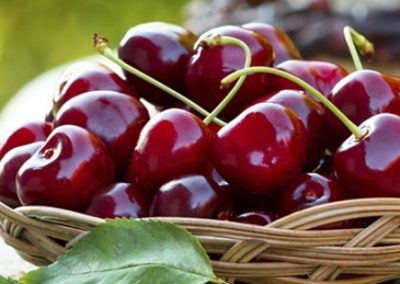 cherry-festival-666.jpg.sunimage.600.315